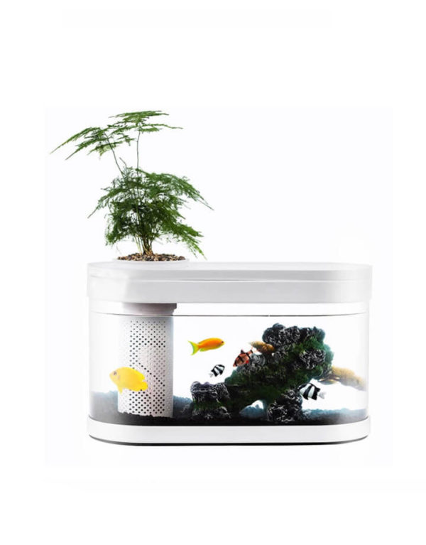 Эко-аквариум Xiaomi Ecosystem Small Water Garden